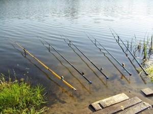 Поплавочные снасти для береговой ловли